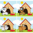 Dogs Different Breed In Front Of His Dog House. Collection — 图库照片