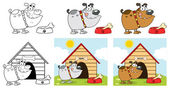 Happy Bulldog Different Color.Collection — Stock Photo
