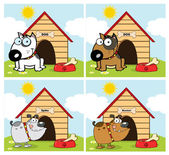 Dogs Different Breed In Front Of His Dog House. Collection — Stock Photo