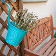 Flower bucket — Stock Photo