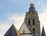 St walburgakerk, oudenaarde, flanders, bélgica — Foto Stock