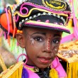 Young Carnival Reveler — Stock Photo #9087522