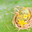 Nest — Stock Photo #9536187