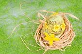 The nest — Stock Photo