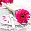 Place setting in pink — Foto Stock