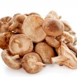 Shiitake mushrooms — Stock Photo #10693815
