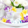 Place setting for Easter with crocuses — Stock Photo #9384223