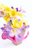 Jarní květy na bílém pozadí — Stock fotografie