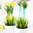 Spring flowers for Easter - Stock Photo