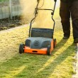 Using a scarifier — Foto de Stock