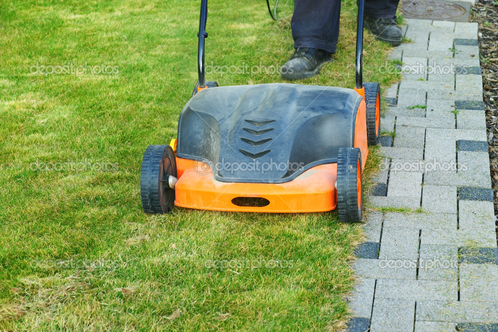 Using a scarifier to improving quality of the lawn — Stock Photo #9724232