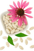 Echinacea purpurea extract pills, alternative medicine concept — Stock Photo