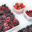 Plastic containers of frozen mixed berries in snow - red currant, cranberry — Стоковая фотография