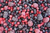 Närbild på frysta blandad frukt - bär - röda vinbär, tranbär, raspber — Stockfoto