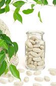 Herbal supplement pills and fresh leaves – alternative medicine still life — Foto de Stock