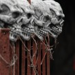 Skulls on a fence — Stock Photo