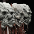 Skulls on fence — Stock Photo #10000745