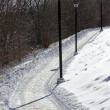 Stock Photo: Wintery path