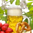 Bavarian beer — Stock Photo #10469043