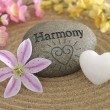 Harmony — Stock Photo #8418363