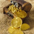 Treasure chest — Stock Photo #8418603