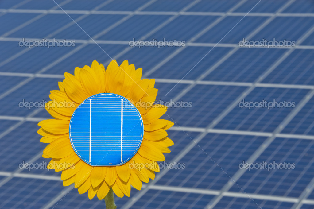 Solar cell and sun flower — Stock Photo #8419150