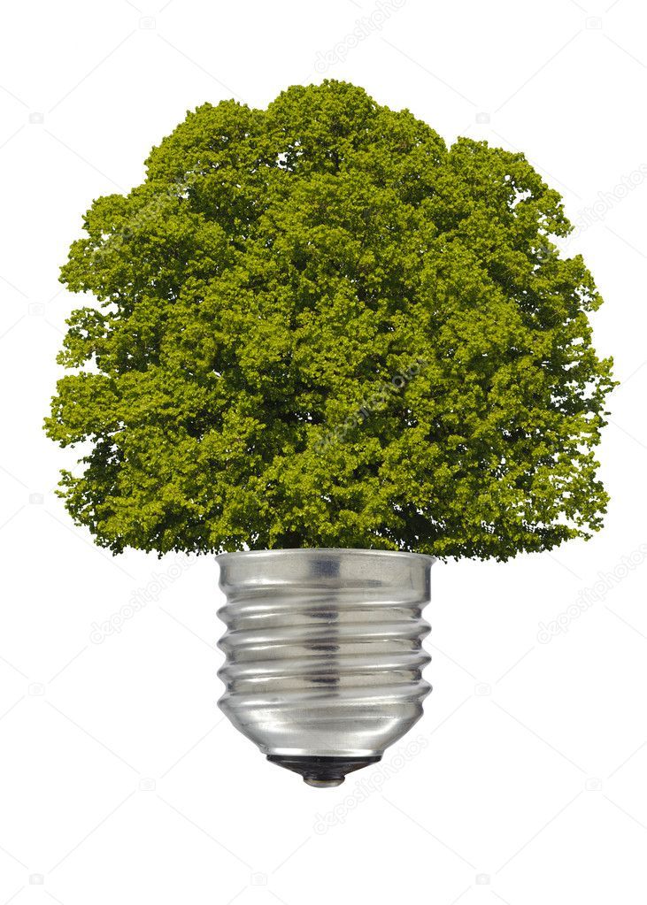 Electric lamp with green tree — Stock Photo #8419182