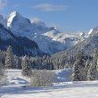 Stock Photo: Bavarian winter landscape