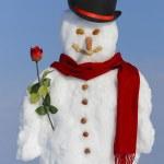 Snowman — Stock Photo #9509779