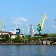 Saint-Petersburg. The cranes at seaport — Stock Photo #8502378