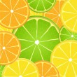 Citrus fruit slice background — Stock Vector