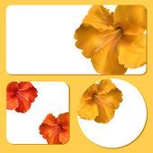 Floral achtergrond sjablonen — Stockvector