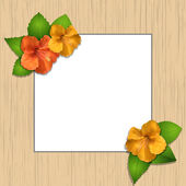 Hibiscus flowers and wooden frame — Stock Vector