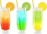 Highball cocktail set — Stock Vector