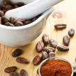 Cocoa beans and cocoa powder — Stock Photo