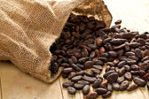 Jute bag with cocoa beans — Stock Photo