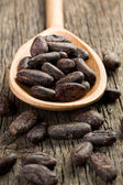 Cocoa beans in wooden spoon — Stock Photo