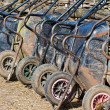 Many wheelbarrows on the farm - Stock Photo