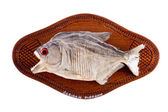 Piranha fish as trophy on wood isolated — Stock Photo