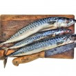 Fresh mackerels - Foto Stock