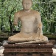 Ancient Buddha — Stock Photo #8739681