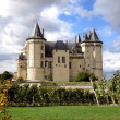 Saumur Chateau — Stock Photo #8739698