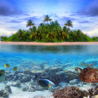 Stock Photo: Tropical island of Maldives