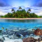 Тропические острова Мальдивы — Стоковое фото