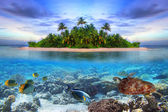 Tropical island of Maldives — Stock Photo