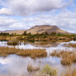 Connemara mountains and lake scenery — Stock Photo