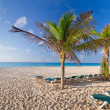 Idyllic beach at Caribbesea — Stock Photo #10486623