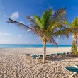 Idyllic beach at the Caribbean sea — Stock Photo