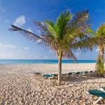 Idyllic beach at the Caribbean sea — Stock Photo
