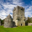 Aughnanure Castle in Co. Galway — Stock Photo #10487048